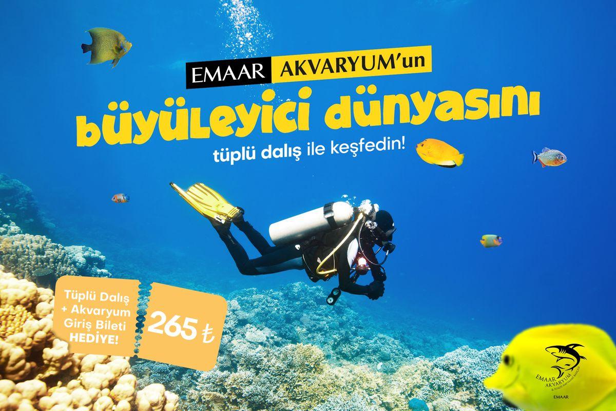 Emaar Akvaryum'un Büyüleyici Dünyasını Tüplü Dalış ile Keşfedin!
