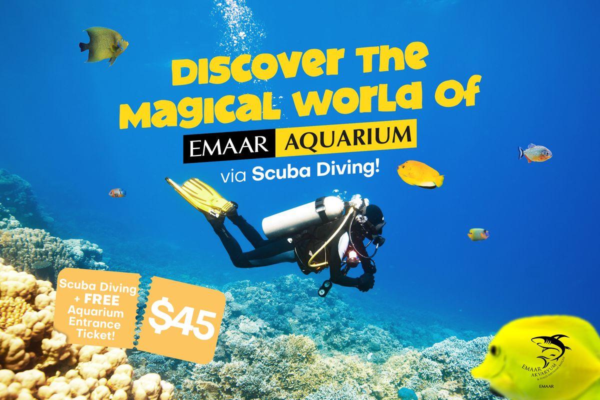 Discover the magical world of Emaar Aquarium via scuba diving!